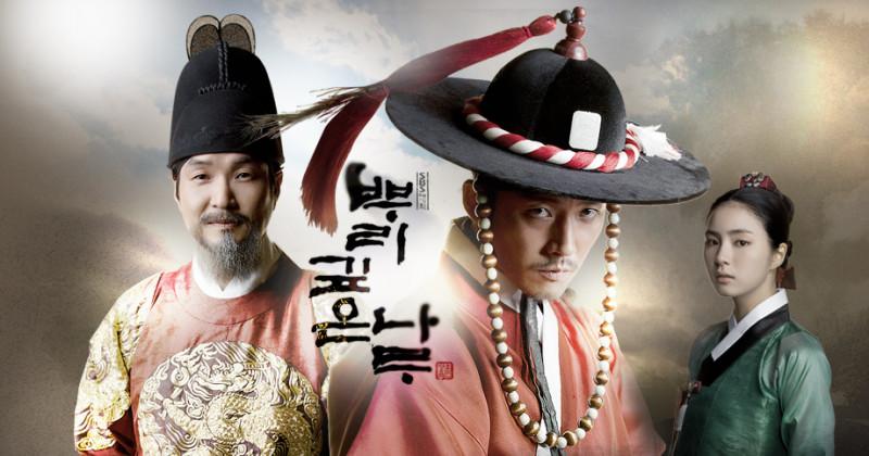 根の深い木-韓国ドラマ