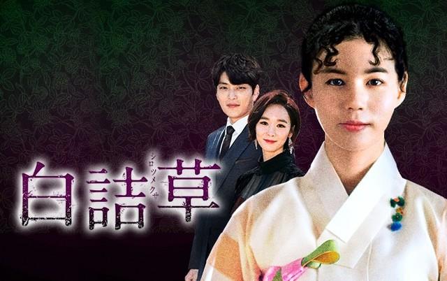 白詰草シロツメクサ-韓国ドラマ